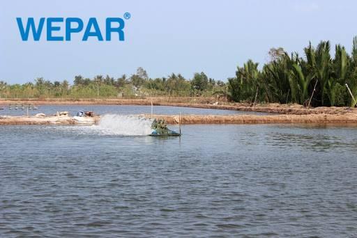 lắp đặt hệ thống lọc nước lợ cho gia đình, sinh hoạt